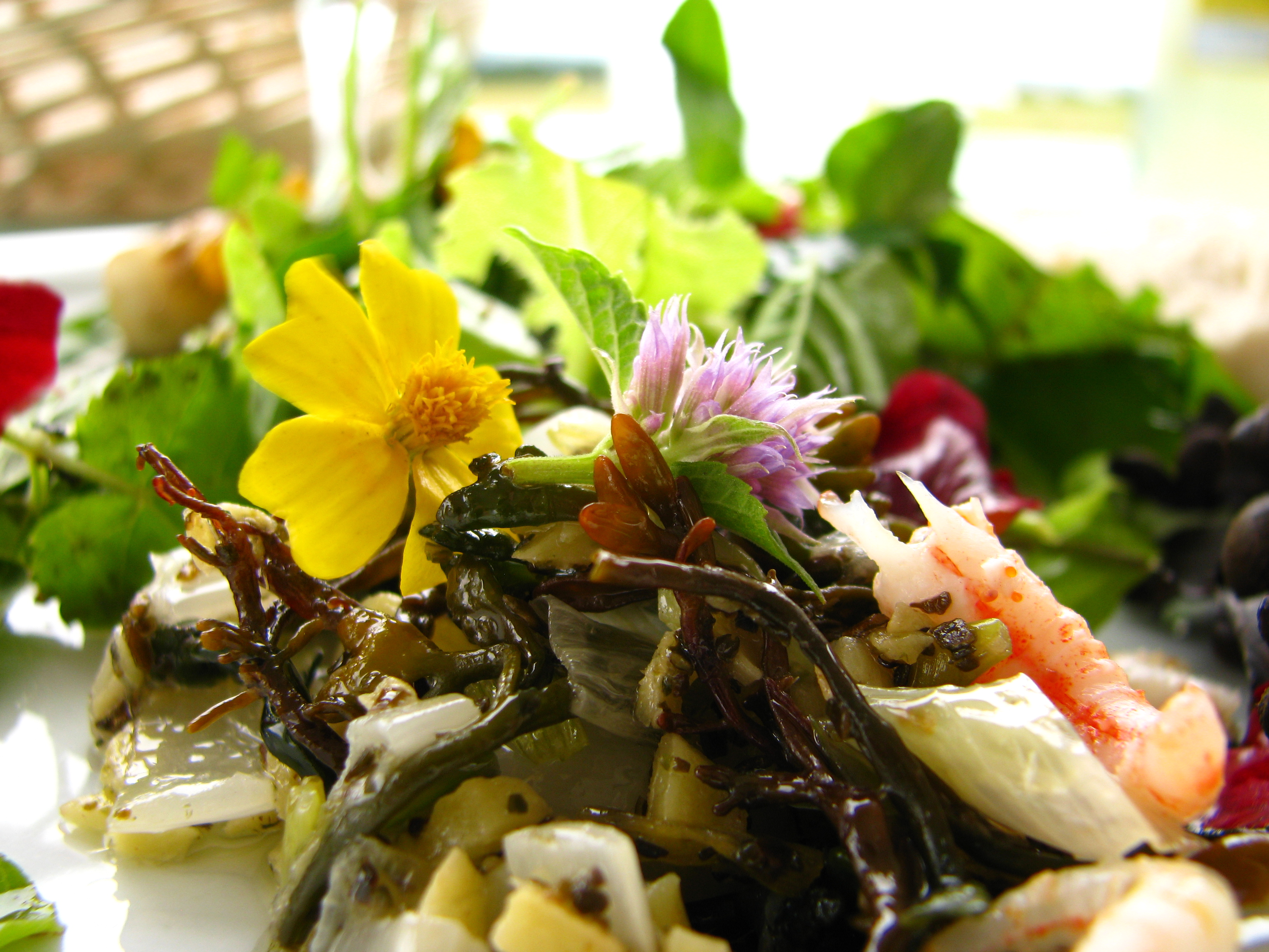 Spiselige blomster og spiselig tang